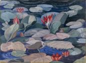 A Water-lily Pond