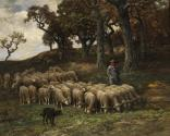 A Shepherd and Flock