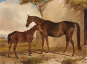 A Mare and Foal